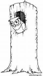 Comment Creuser Un Tronc D Arbre : coloriage un hibou dans un tronc d arbre dessin ~ Melissatoandfro.com Idées de Décoration