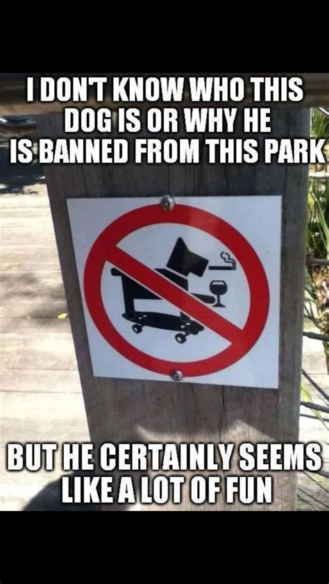 The Signs As Memes - funny dog sign funny pictures quotes memes jokes