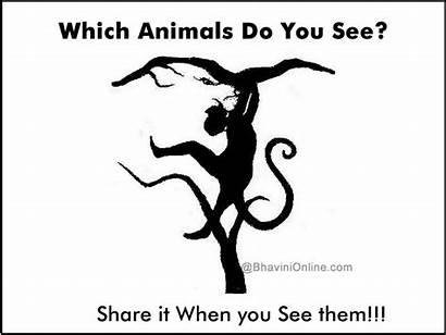 Optical Illusion Illusions Animals Perception Which Puzzles