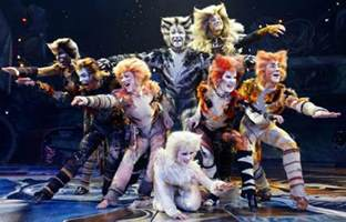 cats musical characters the most memorable animals in musicals