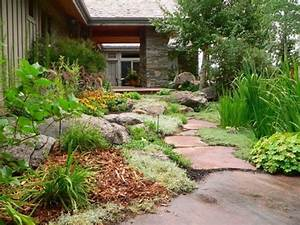 Guide helps homeowners landscape less-thirsty lawns