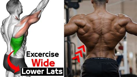 Best Exercise To Build Lower Lats (V TAPER) | LOWER LATS ...