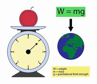 Science Mass Weight Difference Between