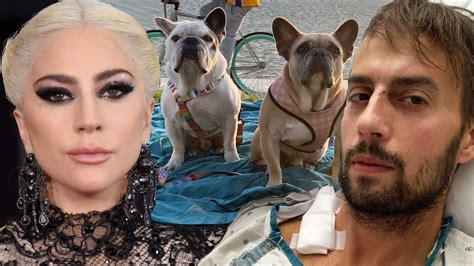 Lady Gaga's Dog Walker Says His Lung Collapsed Several ...
