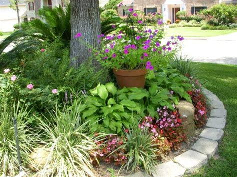 yard flowers 18 best images about flower bed around tree on pinterest trees a tree and front yard flowers