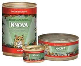 innova cat food innova cat and kitten formula canned cat food cat food