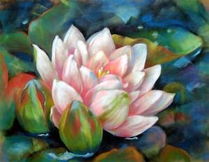 Water Lily Drawing by Usha P