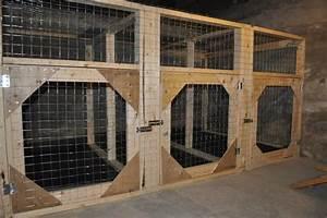 Indoor kennel project for the kennel pinterest for Big indoor dog kennels