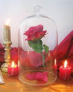 Rose Eternelle Sous Cloche : diy la rose enchant e de la belle et la b te ~ Farleysfitness.com Idées de Décoration