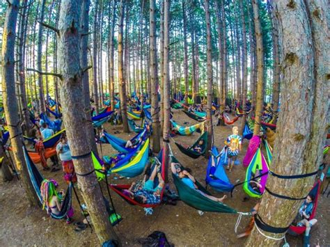 Eno Hammock Cing Tips by 7 Festival Gear Tips To Enhance Your Cing Experience