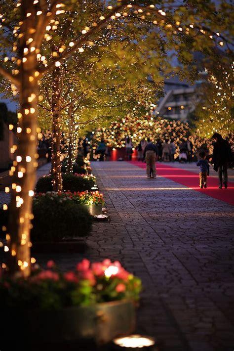 walkway christmas lights christmas traditional