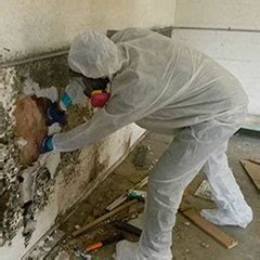asbestos project management asbestos testing removal