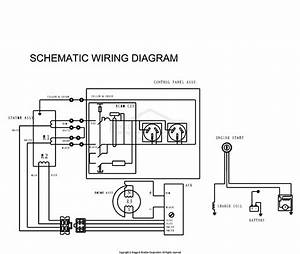 Brigg And Stratton Ignition Coil Wiring Diagram