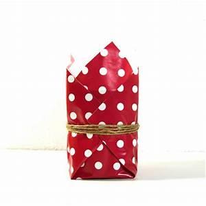 Geschenk Verpacken Schleife : ines felix kreatives zum nachmachen blumentopf ratz fatz als geschenk verpackt ~ Orissabook.com Haus und Dekorationen