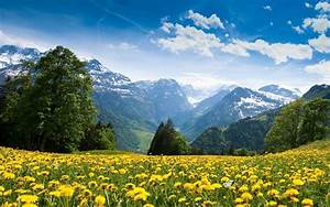 Swiss Landscape Wallpapers