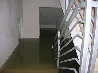 Problème De Cave Ou De Vide Sanitaire Inondés: Que