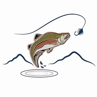 Salmon Coho Vector Illustrations Jumping Clip Background