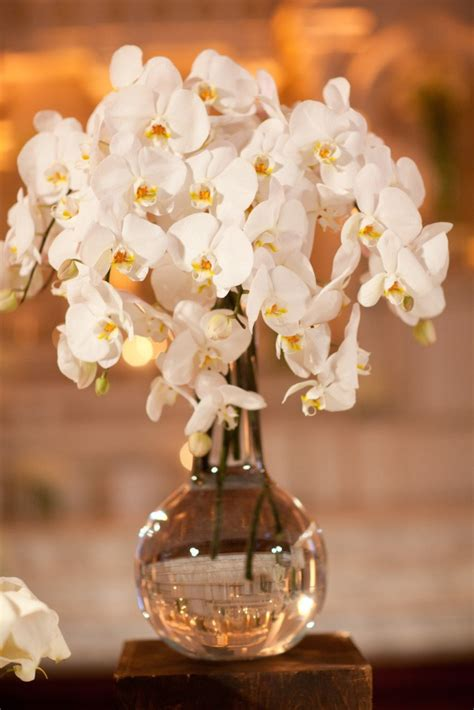 Gorgeous White Orchid Centerpiece Inspiration Lovely
