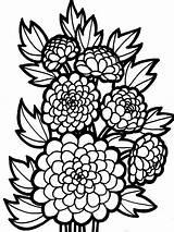 Coloring Chrysanthemum Spring sketch template