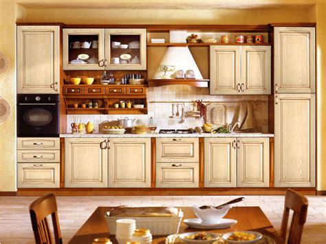 creative kitchen cabinet designs