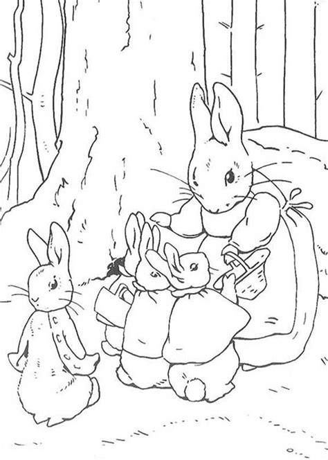peter rabbit mother told peter rabbit sister  shop