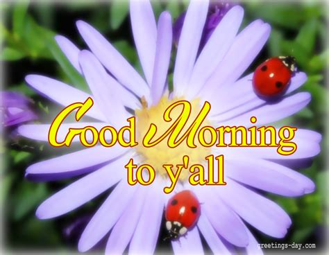 Achieve Big Things In Morning Morning Motivational Morning Daily Ecards Photos And Greetings