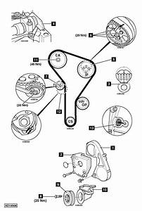 Vw Tdi Timing Belt Diagram