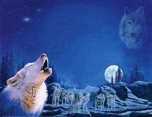 wolf pack | deep blue night scene of wolf pack & full moon ...