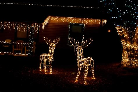 haus beleuchtet weihnachten kostenlose bild haus nacht weihnachten nacht eiszapfen rentiere lichter