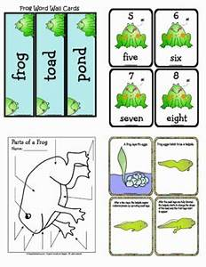 Frog Life Cycle by Crayon Box Classroom | Teachers Pay ...