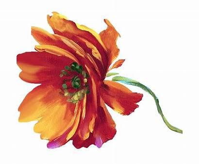 Flower Painting Lisa Audit Flowers Watercolor Studio