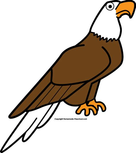 eagle clipart 20 free cliparts images on 216   eagle clipart 4