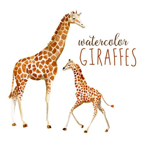 backpack giraffe baby and giraffe clipart outline clipground