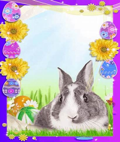 Easter Card Cards Greetings Friends