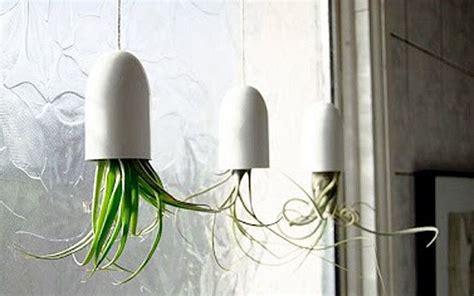 Hängende Pflanzen Wohnung by Diy H 228 Ngende Pflanzen In Interessant Maxima Was