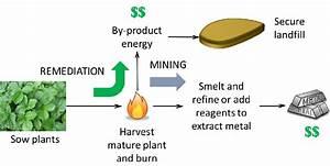 Gold Mining Process Diagram