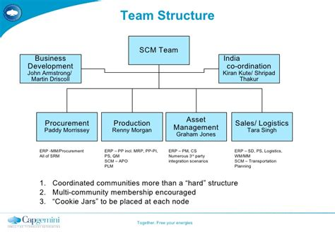Sales Team Structure Template by Team Structure