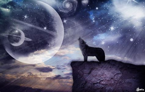 3d Wallpapers Wolf by Wolf 3d Wallpapers 3d Wallpapers
