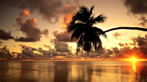 Hawaii Hd Wallpaper Most Beautiful And Eye Catchy