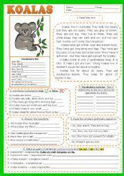 english worksheet koalas reading comprehension fully