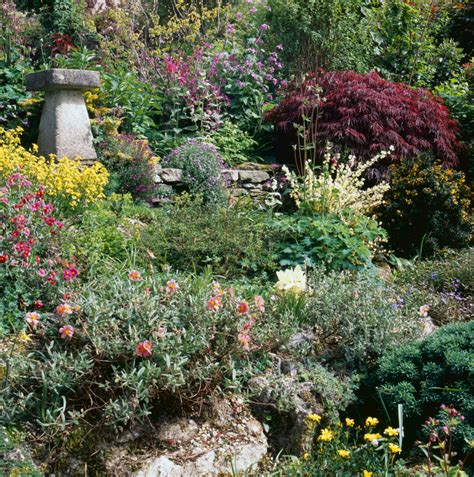 Garten Hang Bepflanzen by Hange Bepflanzen Mit Bodendeckern 187 Die Sch 246 Nsten Im 220 Berblick