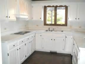 ideas for refinishing kitchen cabinets painting kitchen cabinets white for cleanliness my kitchen interior mykitcheninterior