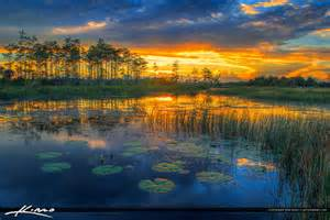 Sunset Over River of Grass Wetland Florida