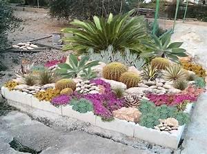 71 idees et astuces pour creer votre propre jardin de rocaille for Attractive idees amenagement jardin exterieur 12 creer un jardin avec des cactus et des palmiers