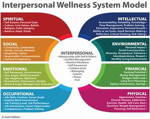 What is the Interpersonal Wellness System?