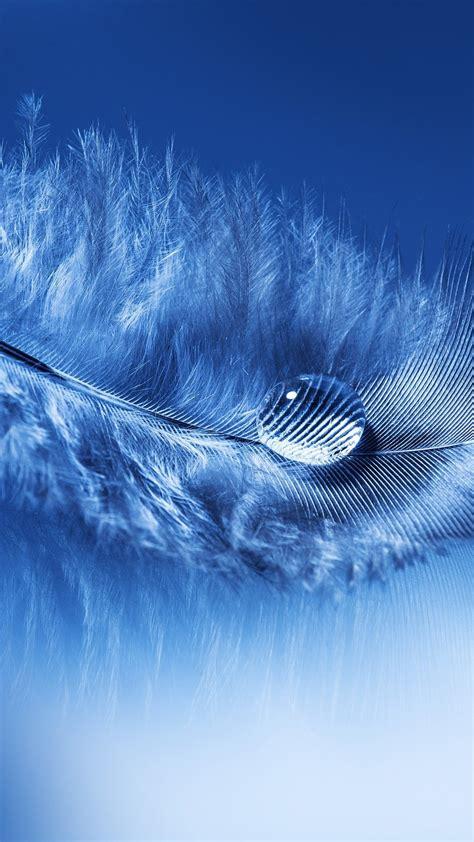 Blue Wallpaper Portrait by Portrait Display Feathers Water Drops Macro Simple