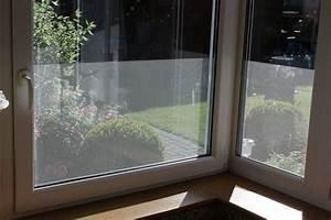 Fenster Sichtschutz Innen : 6 57 m fensterfolie sichtschutz uv schutz selbstklebend klebe folie ebay ~ A.2002-acura-tl-radio.info Haus und Dekorationen