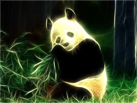 Cool Baby Animal Wallpapers Pandas Pandas Wallpaper 16573302 Fanpop