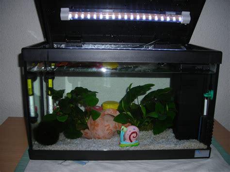 Filtre Pour Aquarium 20l by Chauffage Aquarium 20l Trendyyy