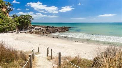 Zealand Island North Hidden Road Beach Gems